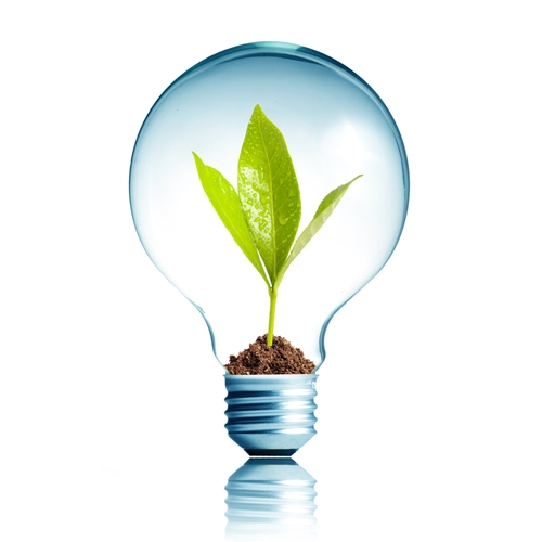 Bright ideas can be made all the better if they're allowed to GROW.